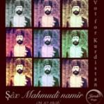 shex-mahmud